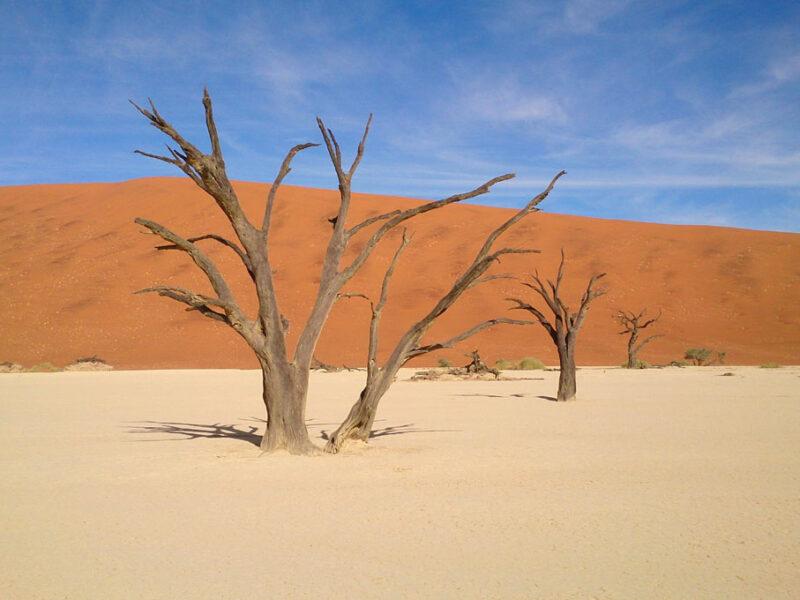 Namibia Sossusvlei-Onkoshi safari Namibia